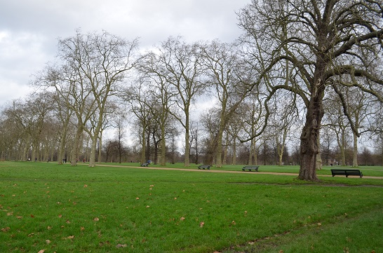 Hyde Park : Winter